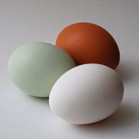 huevos-resfriado