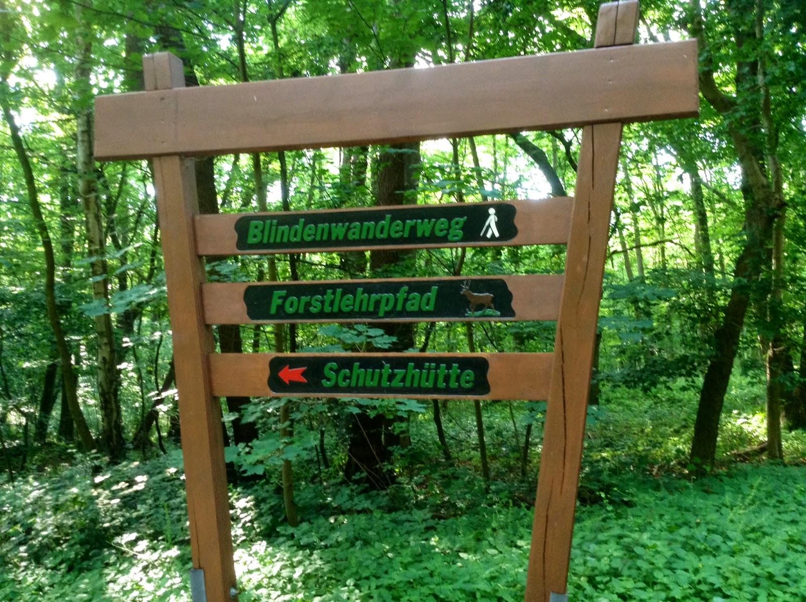 Num passeio pela floresta ao lado do Centro BFW , que também é acessível!
