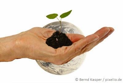 Światowy trend eko-pielęgnacji,  czyli dlaczego przestaje nam wystarczać własny ogródek