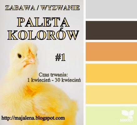 WYZWANIE -Paleta Kolorów