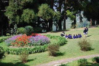 Lloyd's Botanical Garden Darjeeling