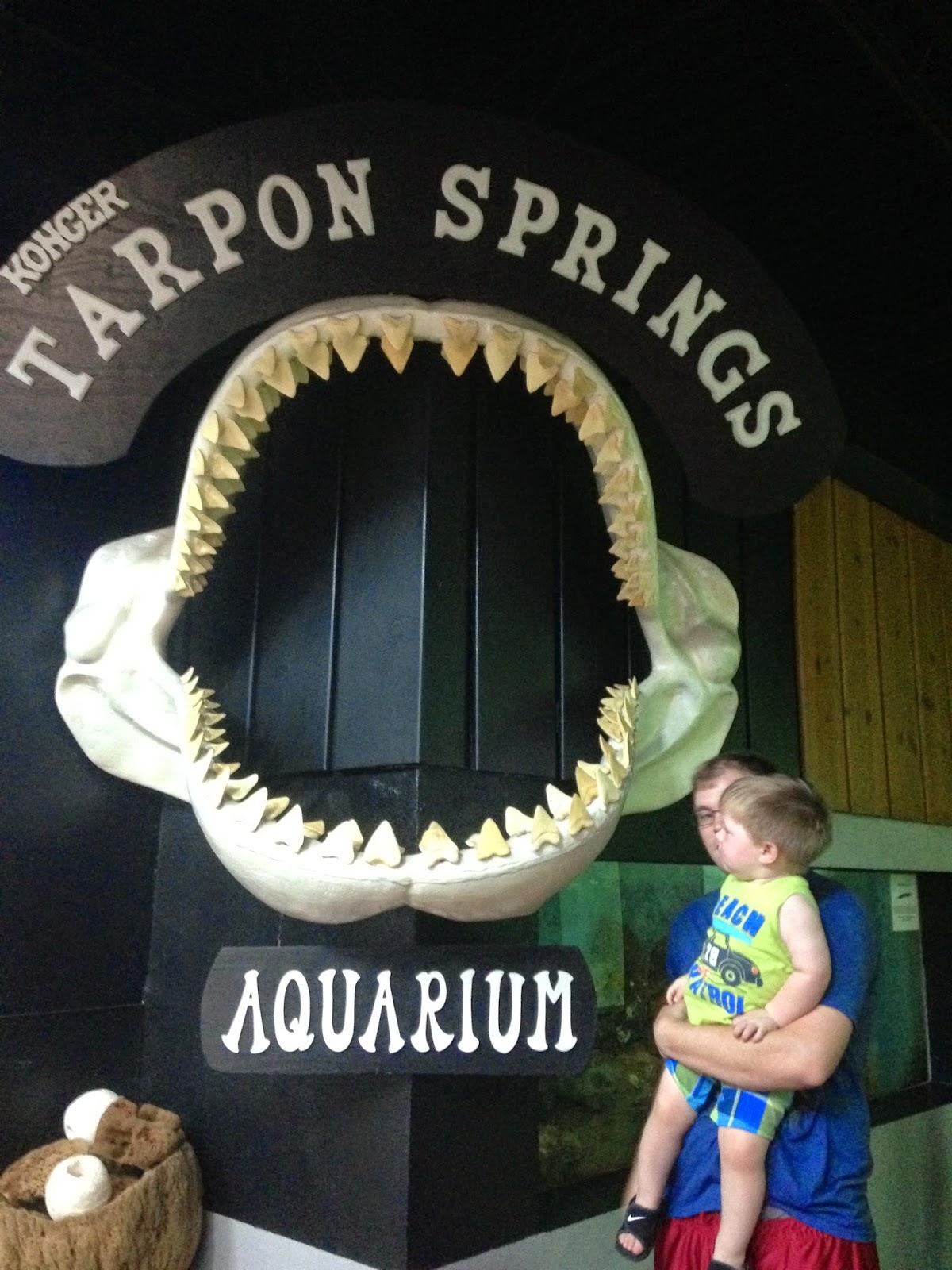 ZooZooReview: Tarpon Springs Aquarium