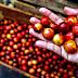 El camu camu fruto amazónico que cuida tu salud