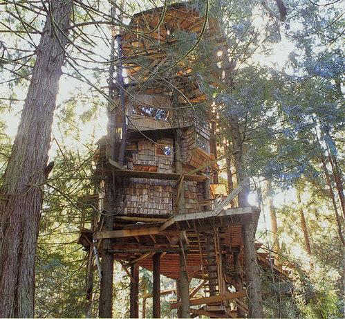 Inside Extreme Tree Houses A tree house gone extreme