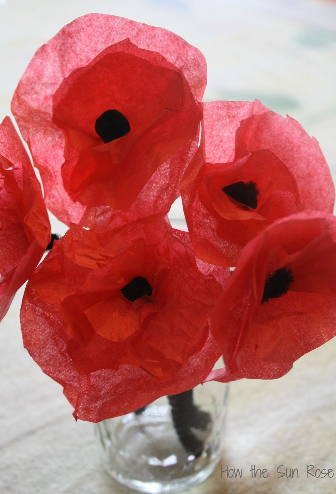 How The Sun Rose Making Poppies