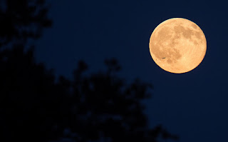 Blue moon over Arlington, VA. Photo Credit: (NASA/Joel Kowsky) (Public Domain Image)