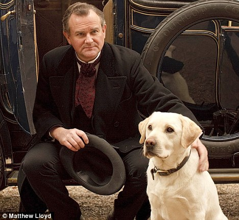Downton Abbey Lord Grantham Crawley Dog Isis