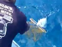 Gila Mancing Seru Dapat Ikan Sagai