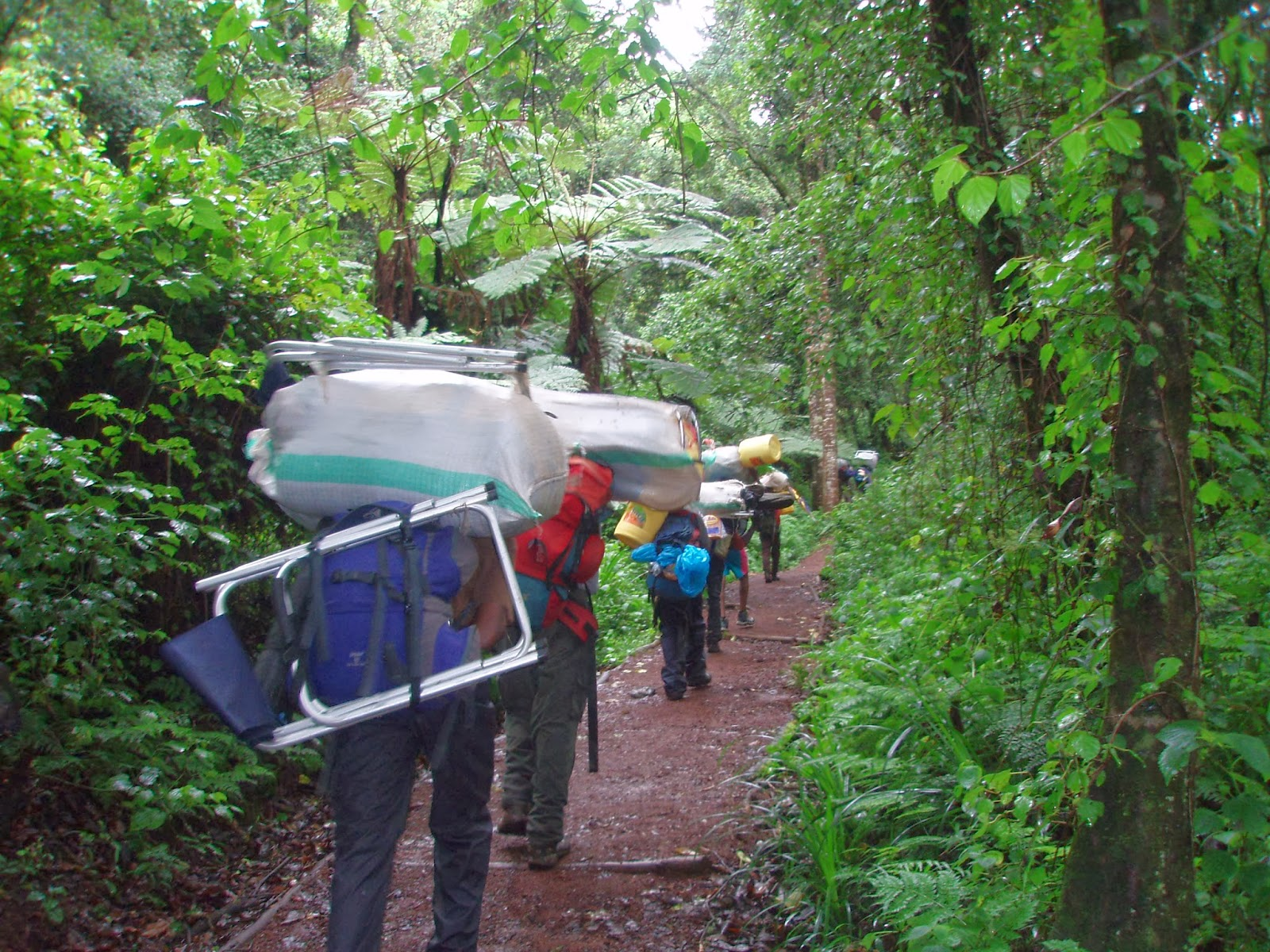ENLACIMA-Fila-de-porteadores-Ruta-Machame-Kilimanjaro