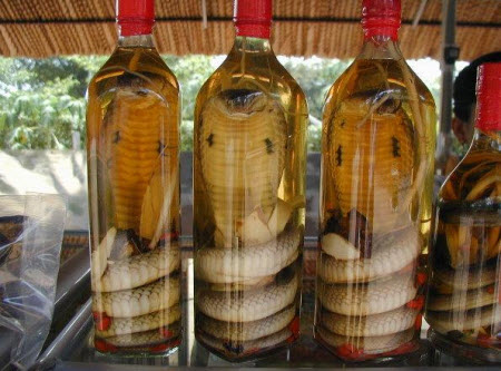 China: Vino de serpiente