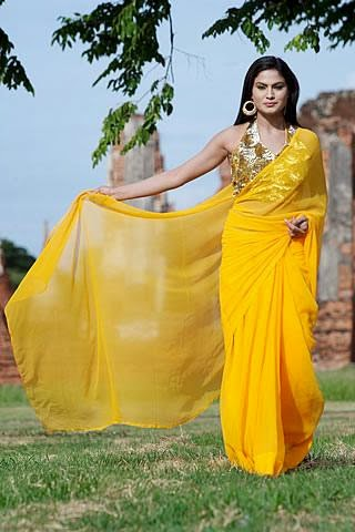 Veena malik in yellow saree HD photo wallpaper