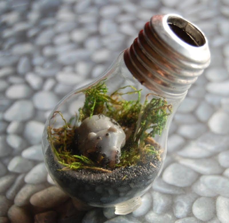 the craftinomicon lightbulb terrarium. Black Bedroom Furniture Sets. Home Design Ideas