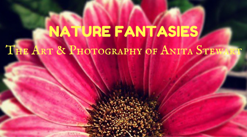 Nature Fantasies