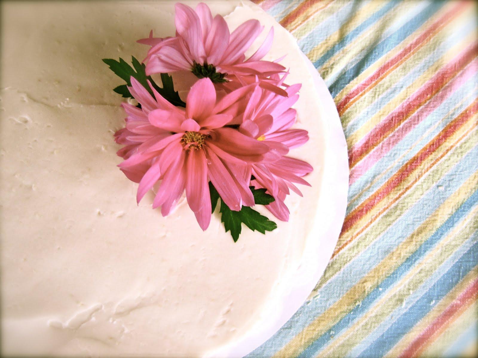 Yammies Noshery Simple White Cake