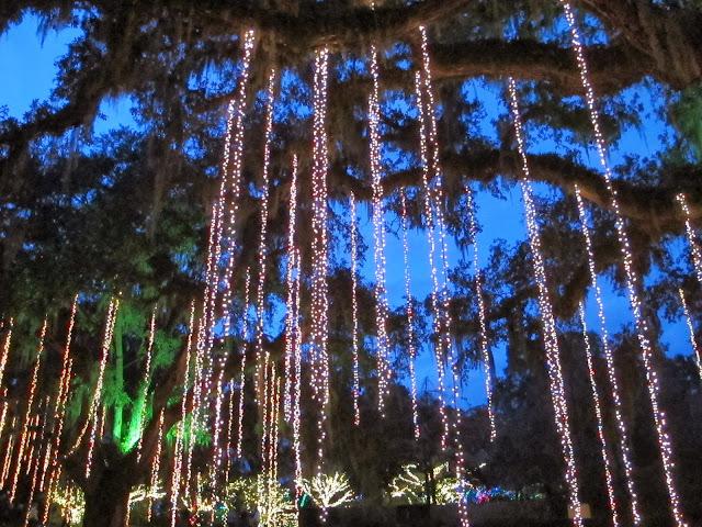 Sparkling Lights at Brookgreen Gardens