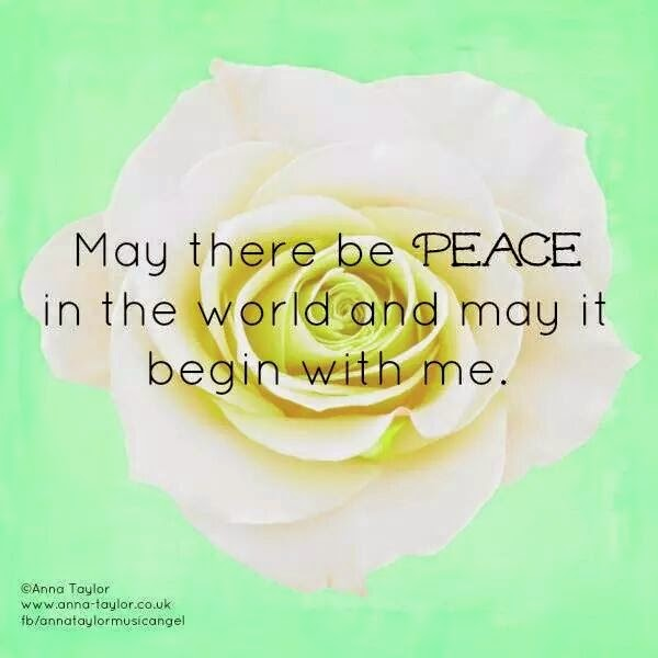 """May there be Peace in the world and may it begin with me."" Picture of a white rose. www.anna-taylor.co.uk"