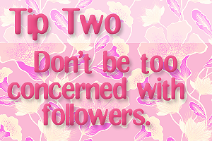 Tip Two: Don't be too concerned with followers.