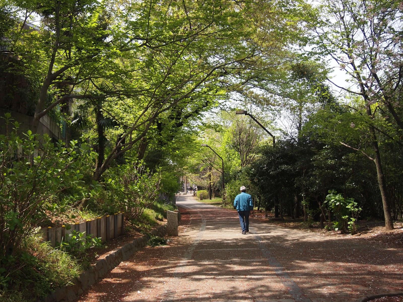 桐ヶ丘団地遊歩道