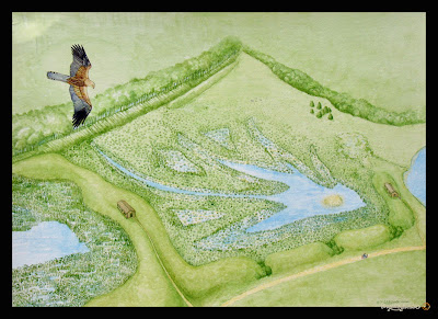 North East artist Ingrid Sylvestre Painting of aerial view of Nature Reserve at Witton le Wear for Interpretive Panel North East UK