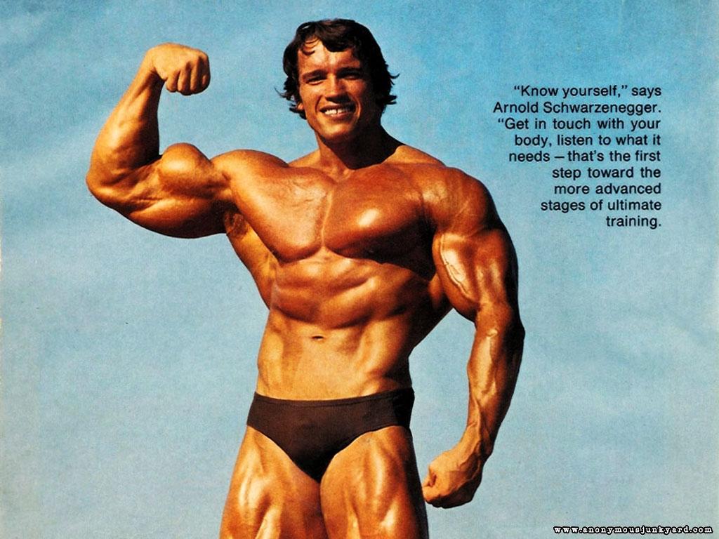 http://2.bp.blogspot.com/-nXo_xU2ARS0/TkhG6IivJqI/AAAAAAAAAYw/k00yn4YartE/s1600/Arnold+Schwarzenegger+Bodybuilding+Wallpaper-17.jpg
