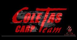 VIDEOS DE COLETAS CARP