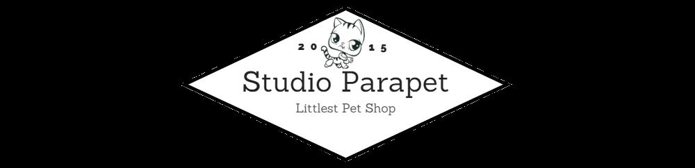 Studio Parapet