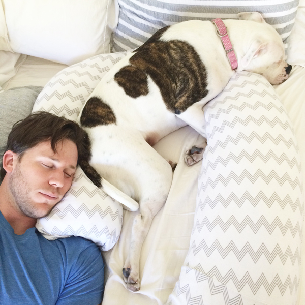 Bump Nest pregnancy pillow - stolen by husband and dog