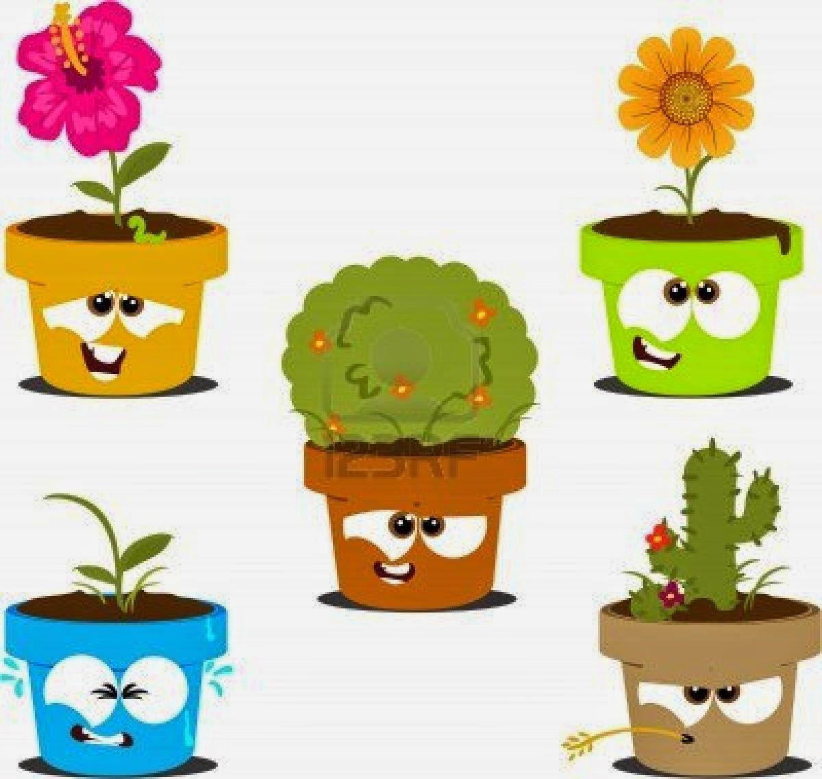 Biolog a y vida reino plantae for Todas las plantas ornamentales