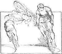 Велосипедисты и муха