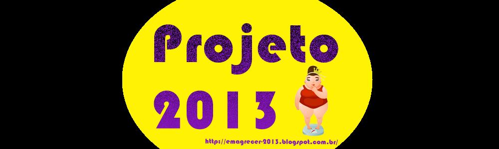Projeto 2013