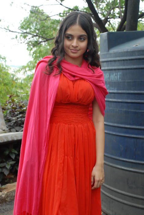 sheena shahabadi shoot red dress actress pics