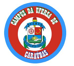 UFERSA - CARAÚBAS