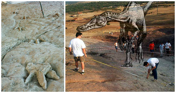 imagen_sierra_demanda_salas_infantes_dinosaurios_huellas