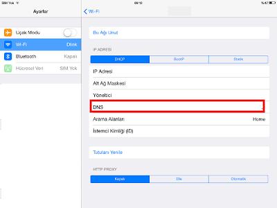 iPhone-DNS-Ayarlari