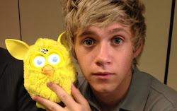 Niall Horan (19 l.)