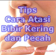 tips cara atasi bibir kering dan pecah pecah