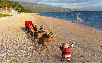 Le Père Noël sur la plage de l'hermitage à la Réunion