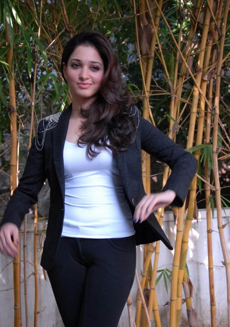 Download Popular Wallpapers 5 Stars Latest HD Wallpapers Of Tamanna