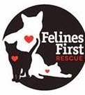 https://www.facebook.com/FelinesFirst