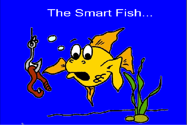 The creative counselor don 39 t be caught being angry be a for Are fish smart