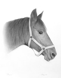Horse Head Study