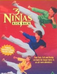3 Ninjas Kick Back | Bmovies