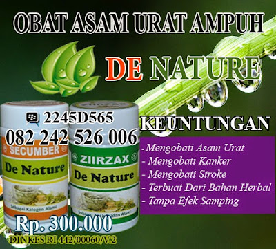 obat tradisional asam urat dan darah tinggi ampuh