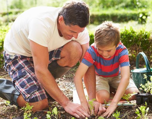 هل أنت رجل حقيقي,رجل اب وابنه يزرعان الخضرا مزروعات الزراعه ,man dad son boy kid plant planting trees freen