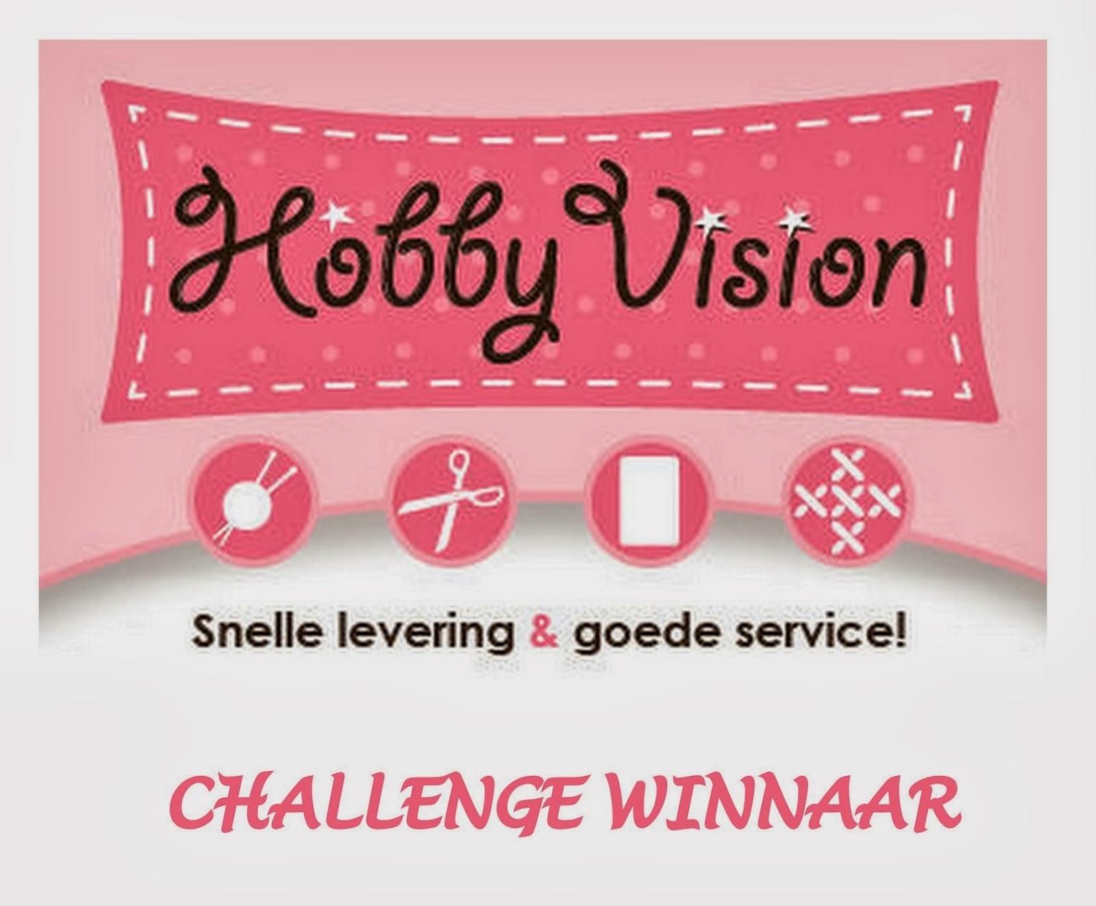hobbyvision design