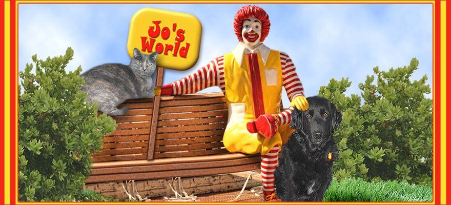Jo's World
