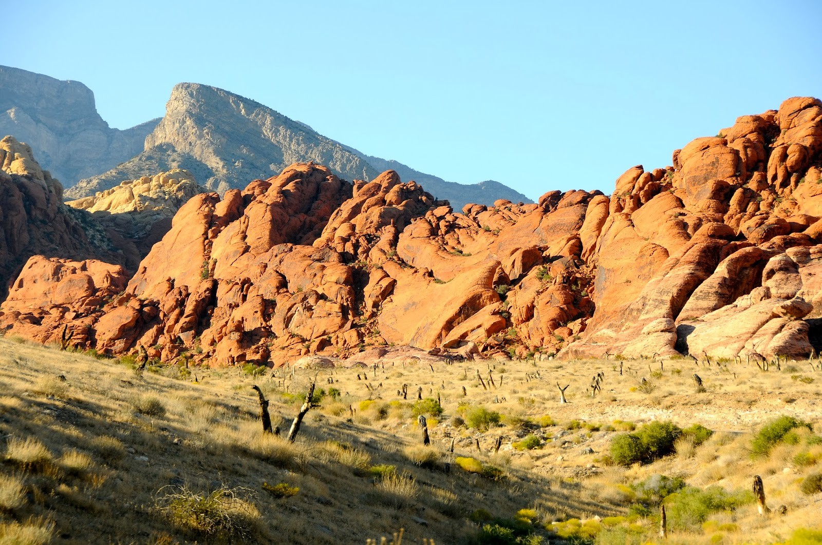 best place to propose in Las Vegas - Red Rock Canyon view