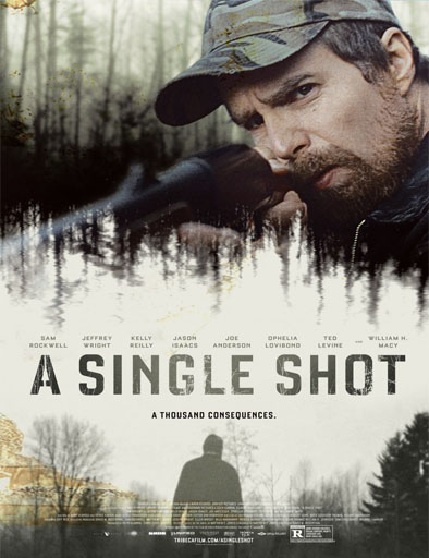Ver A Single Shot (2013) Online