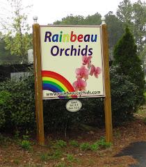Rainbeau Orchids Milton GA