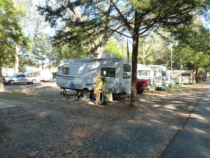 67 Cliftwood Mobile Home And Rv Park Monaco Ocala Fl 34482 Campgrounds In Florida Photo